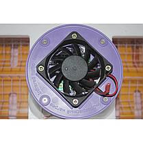 Инкубатор автоматический Рябушка Smart на 40 яиц (r40a), фото 3