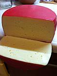 Пакеты для вызревания сыра (СРЕДНИЕ), фото 4