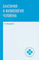 Анатомия и физиология человека: Учебник. Федюкович Н.И.