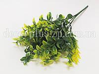 Букет лавра декоративного , оливковый, фото 1