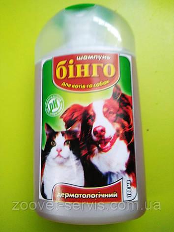 Шампунь дерматологический для кошек и собакБинго100 мл, фото 2