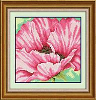 Набор для рисования камнями (холст) Розовые маки LasKo
