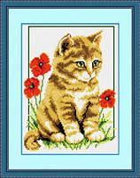 Набор для рисования камнями (холст) Котик среди маков LasKo