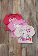 Кофта детская с начесом  разные рисунки и цвета