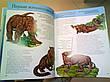 Вымершие животные  Полная энциклопедия , фото 4