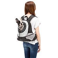 Рюкзак - переноска Kangoo, фото 1