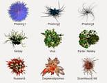 Боротьба з мікробами, вірусами - послуги Дезінфекції в Кривому Розі, фото 3