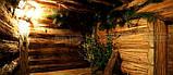 Баня из липового горбыля, фото 7