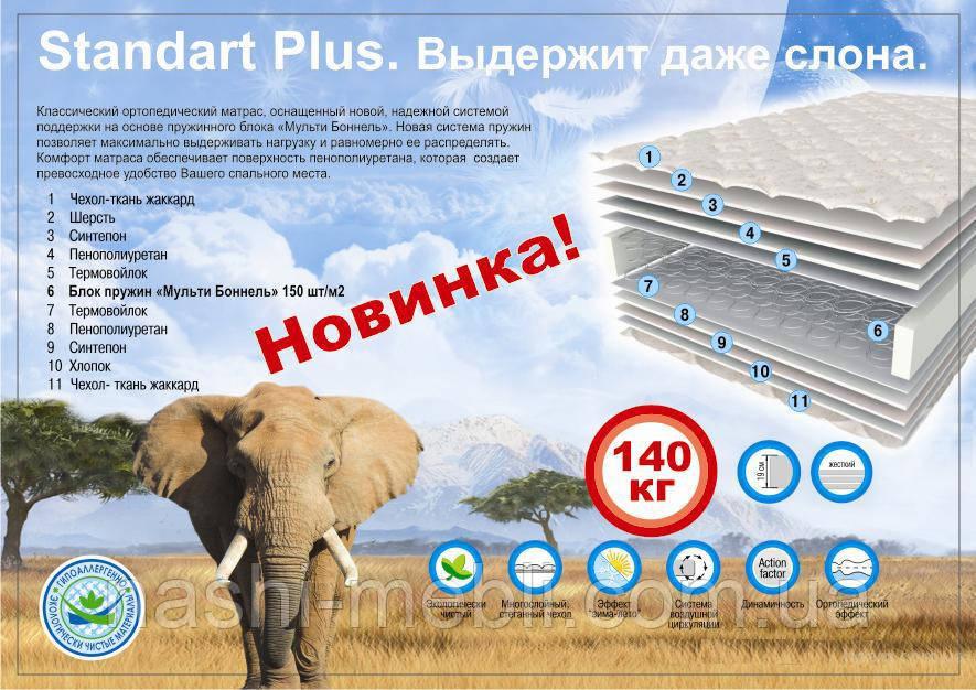 Standart Plus / Стандарт Плюс