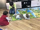 Коврик детский «Мультфильм», т. 11 мм, хим сшитый пенополиэтилен,120х250 см. Украина, TERMOIZOL®, фото 7