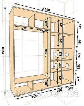 Шкаф-купе 2000*450*2200, 2 двери (Алекса)
