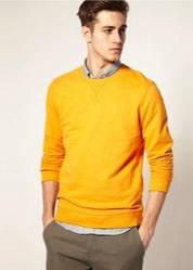 Мужские свитера батники