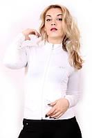 Кофта женская спортивная №1, фото 1