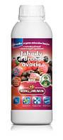 Удобрение  для ягодных культур «Рокогумин» ( Rokohumin)