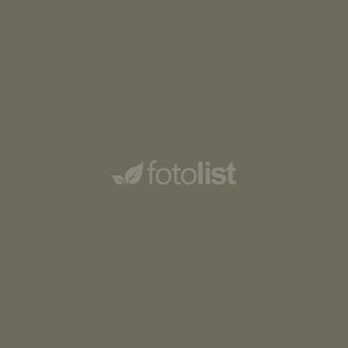 Фон бумажный BD 2,72 х 11,0 м Серый (Dove) (109BDCW)