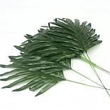 Лист пальмы  декоративный 39 см  (20 шт в уп.), фото 3