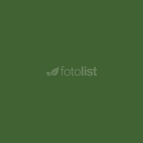 Фон бумажный BD 1,35 х 11,0 м Зеленый (Foto) (16252 BD)