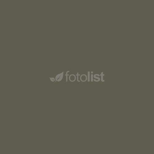 Фон бумажный BD 1,35 х 11,0 м Серый (Dove) (10952 BD)