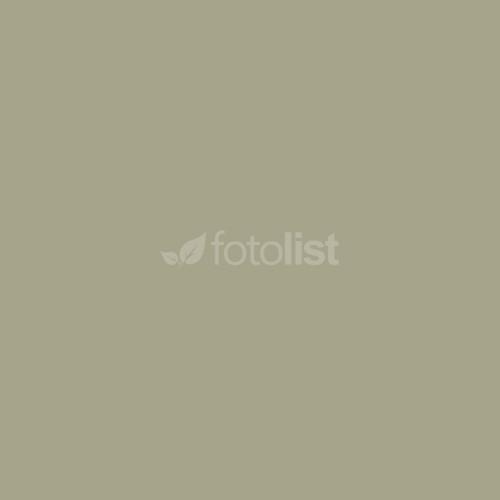 Фон бумажный BD 2,72 х 11,0 м Серый (Photo) (153BDCW)