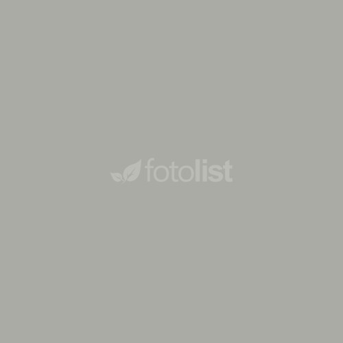 Фон бумажный BD 2,72 х 11,0 м Серый (Plaza Gray) (119BDCW)