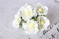 Декоративные цветы вишни 6 шт. диаметр 2,5 см, молочного цвета, фото 1