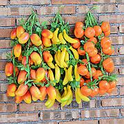 Фрукти, овочі, ягоди
