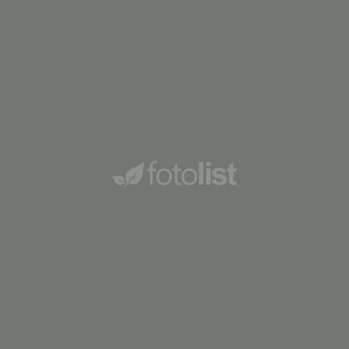 Фон бумажный BD 1,35 х 11,0 м Серебристо-серый (11252 BD)