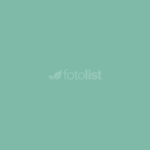 Фон бумажный BD 2,72 х 11,0 м Зеленый (Aqua) (165BDCW)