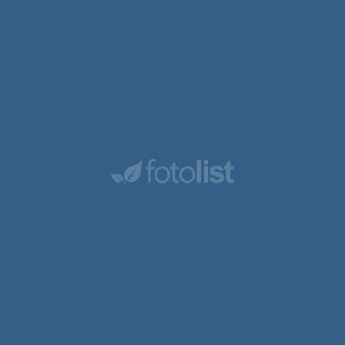 Фон бумажный BD 2,72 х 11,0 м Синий (Regal) (125BDCW)