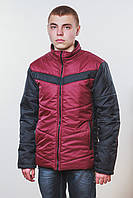 Куртка мужская бордо, фото 1
