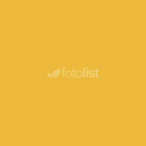 Фон бумажный BD 2,72 х 11,0 м  Желтый (Sunflower) (138BDCW)