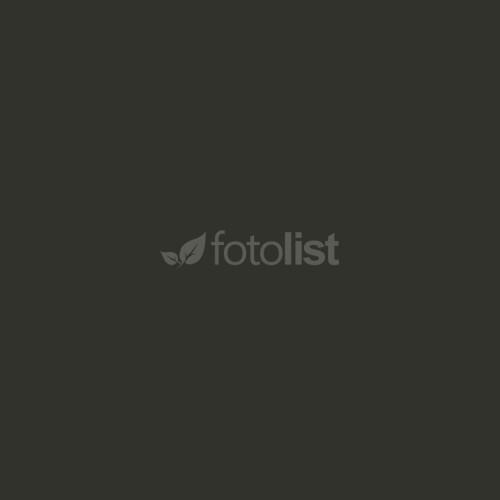 Фон бумажный BD 2,72 х 11,0 м Серый (темно) (131BDCW)