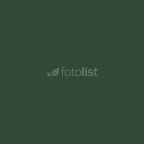 Фон бумажный BD 2,72 х 11,0 м Зеленный (Jade) (137BDCW)