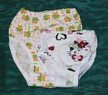 Труси для дівчаток 26-34р.кулір, фото 2