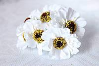 Цветы герберы диаметр 4 см белого цвета, фото 1