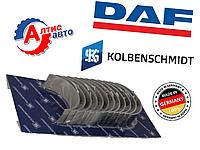 Вкладыши шатунные DAF XF 105 Евро 5, XF CF 85 75 запчасти для двигателя Даф