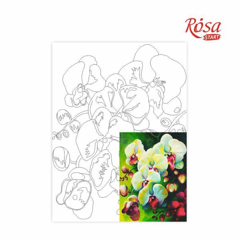 Холст на картоне с контуром Rosa Start 30x40 см акрил хлопок Натюрморт №18 (4820149894546)