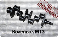 Коленвал МТЗ -2401005015 д240