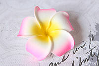 Цветы плюмерии 6 см диаметр розового цвета, фото 1