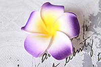 Цветы плюмерии 6 см диаметр фиолетового цвета
