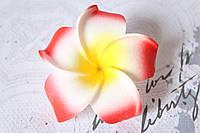 Цветы плюмерии 6 см диаметр красного цвета, фото 1