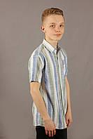 Рубашка мужская полоска Danger Jeans 522 Green Размеры M/46 XL/50