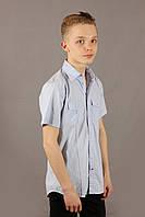 Рубашка мужская голубая Emilio Sagezza SG011 Размеры XXL/52
