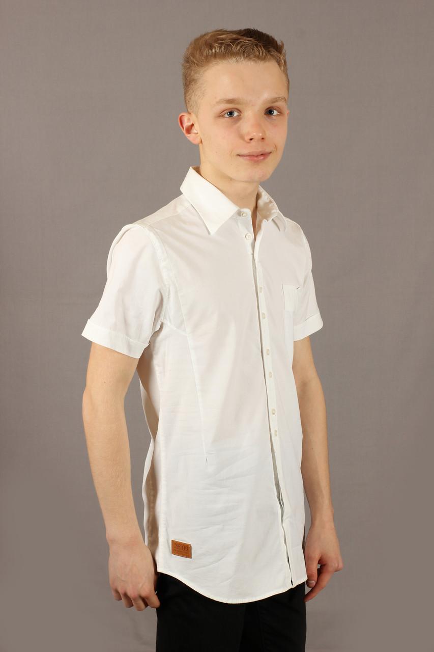 Рубашка мужская белая Emilio Sagezza SG014 Размеры S/46 L/50 XXL/54