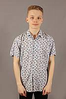 Рубашка мужская в цветочек Zagato светло-серый Размеры M/46