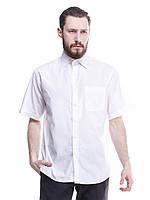 Белая классическая мужская рубашка с коротким рукавом