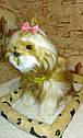🐶 Интерактивная собачка с датчиком движения на коврике живая: супер ПОДАРОК ребенку, фото 6