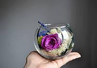 Стабилизированная роза в мини-аквариуме