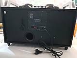 Бумбокс портативний AILIANG UF-1606B-DT колонки USB\Bluetooth\FM-тюнер\Пульт ДУ, фото 6