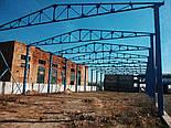 Зерносховище 24х30 Двускат Ангар Склад Навіс Каркас, фото 6